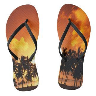 Chinelos da praia do por do sol da palmeira