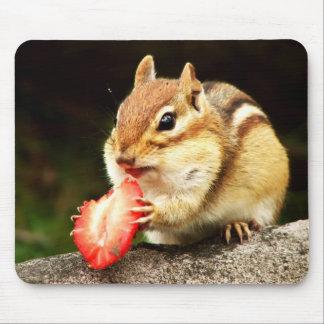 Chipmunk carnudo bonito com morango mouse pads