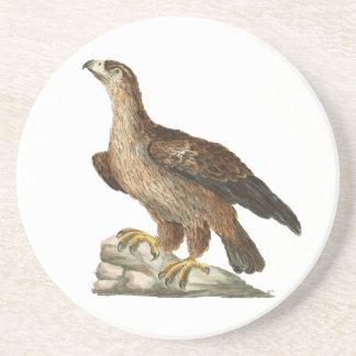Chrysaetos de Eagle dourado - de Aquila Porta Copos De Arenito