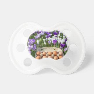 Chupeta Caixa de ovo com os ovos da galinha nos açafrões