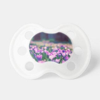 Chupeta Flores do açafrão