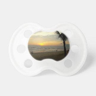 Chupeta Nascer do sol da praia com palmeira