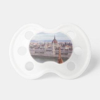 Chupeta O parlamento húngaro Budapest em o dia