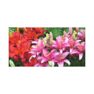 Chuva do verão em lírios cor-de-rosa e vermelhos impressão em tela