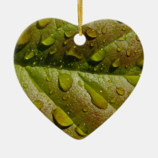 Chuva em uma folha da magnólia ornamento de cerâmica coração