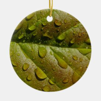 Chuva em uma folha da magnólia ornamento de cerâmica redondo