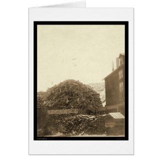 Cidade SD 1888 do moinho da madeira serrada no cen Cartões