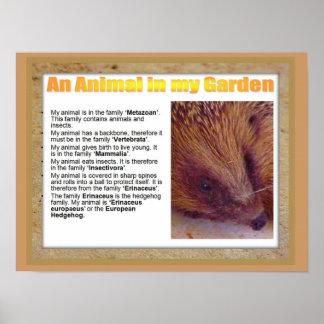 Ciência, ciência da vida, um animal em meu jardim impressão
