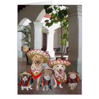 Cinco customizável de Mayo Cartao