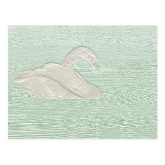 Cisne branca cartão postal