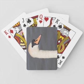 Cisne muda jogos de baralhos
