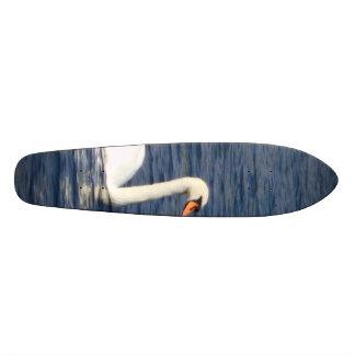 Cisne Skates Personalizados
