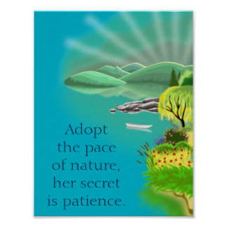 Citações inspiradas na natureza e na paciência poster