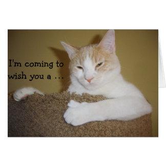 Climbing Cat: Funny Birthday Card Cartão Comemorativo