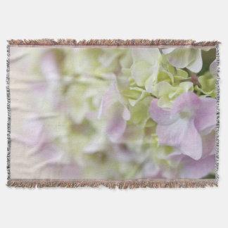 Close up do Hydrangea Manta