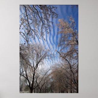 cloudstripes, fotografia de Caitiff do © Poster
