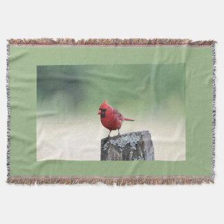 Cobertor Cardeal do norte