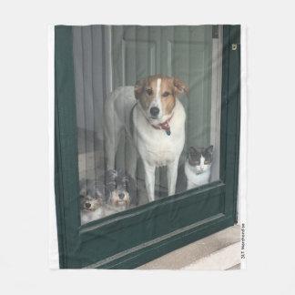 Cobertor De Velo 3 cães e um gato