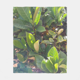 Cobertor De Velo O verde deixa a cobertura do velo