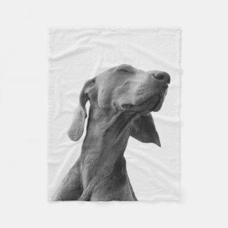 Cobertor De Velo Sonhando a cobertura do cão
