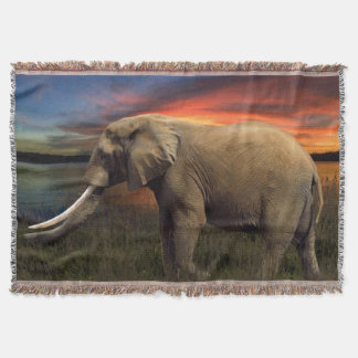 Cobertor Elefante na cobertura do lance do por do sol
