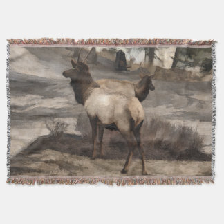 Cobertor Fanfarrões novos dos alces   - Banff Alberta