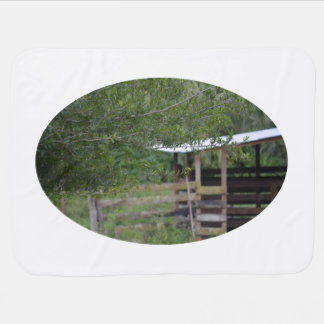 Cobertor Para Bebe árvore e foto velha de florida do celeiro