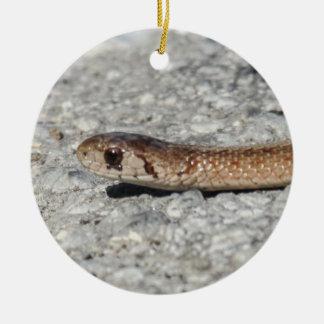 Cobra do norte de Brown Ornamento De Cerâmica Redondo