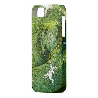 cobrir do cobra de iPhone/ipad Capa Barely There Para iPhone 5