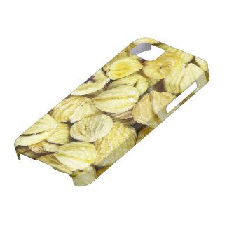 Cobrir secado das castanhas iPhone5 Capa Para iPhone 5