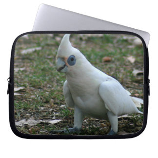 Cockatoo Eyed azul Sleeve Para Laptop