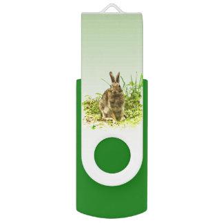 Coelho de coelho de Brown na movimentação verde do Pen Drive Giratório