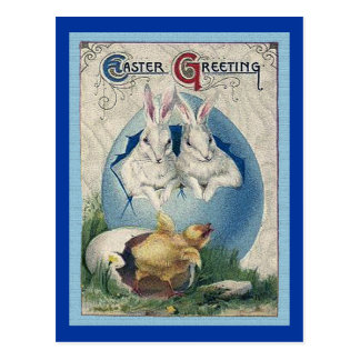 Coelhos e pintinho brancos da páscoa do vintage cartão postal