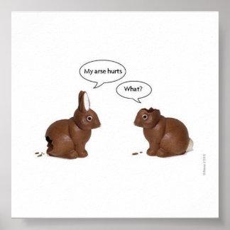 coelhos engraçados poster