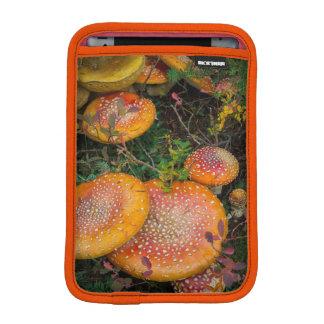 Cogumelos do agaric de mosca no lago Mowich Luvas iPad Mini
