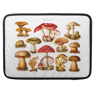 Cogumelos do vermelho da variedade do cogumelo dos bolsa para MacBook pro