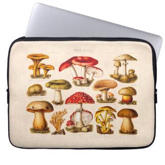 Cogumelos do vermelho da variedade do cogumelo dos capa de notebook