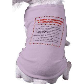 Coisas que engraçadas eu aprendi de meu Pinscher Camisa Sem Mangas Para Cachorro