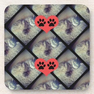 Colagem do gato com o PawPrints por Shirley Taylor Porta-copos