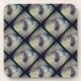 Colagem do gato por Shirley Taylor Porta-copo