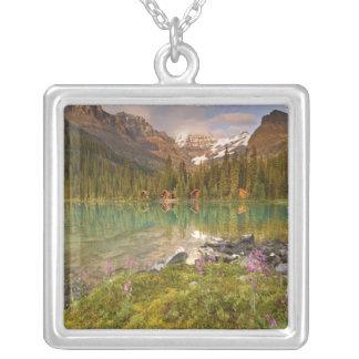 Colar Banhado A Prata Canadá, Columbia Britânica, parque nacional de