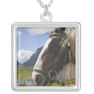 Colar Banhado A Prata Cavalo, Gap de Dunloe, Kerry do condado, Ireland