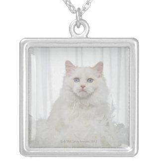 Colar Banhado A Prata Gato branco com penas