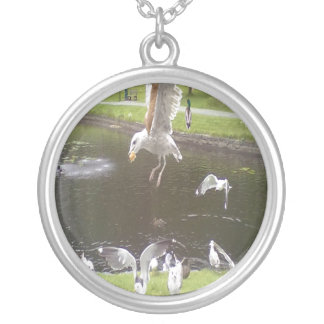 Colar Banhado A Prata Gato que voa uma gaivota