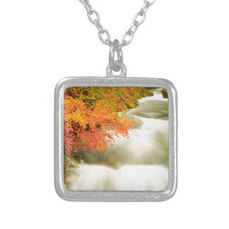 Colar Banhado A Prata O desfiladeiro de Soteska Vintgar no outono