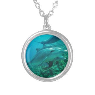 Colar Banhado A Prata oceano marinho dos peixes do golfinho sob a