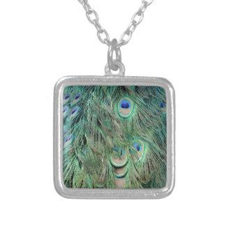 Colar Banhado A Prata Penas verdes e azuis dos ganhos do pavão