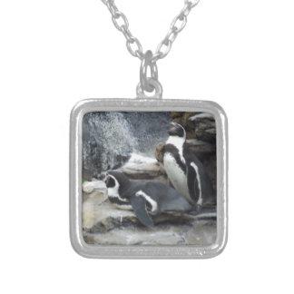 Colar Banhado A Prata Pinguins