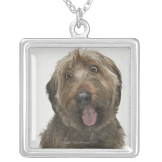 Colar Banhado A Prata Retrato do cão de Briard