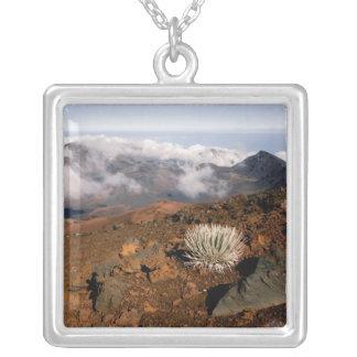 Colar Banhado A Prata Silversword na borda da cratera de Haleakala de 3